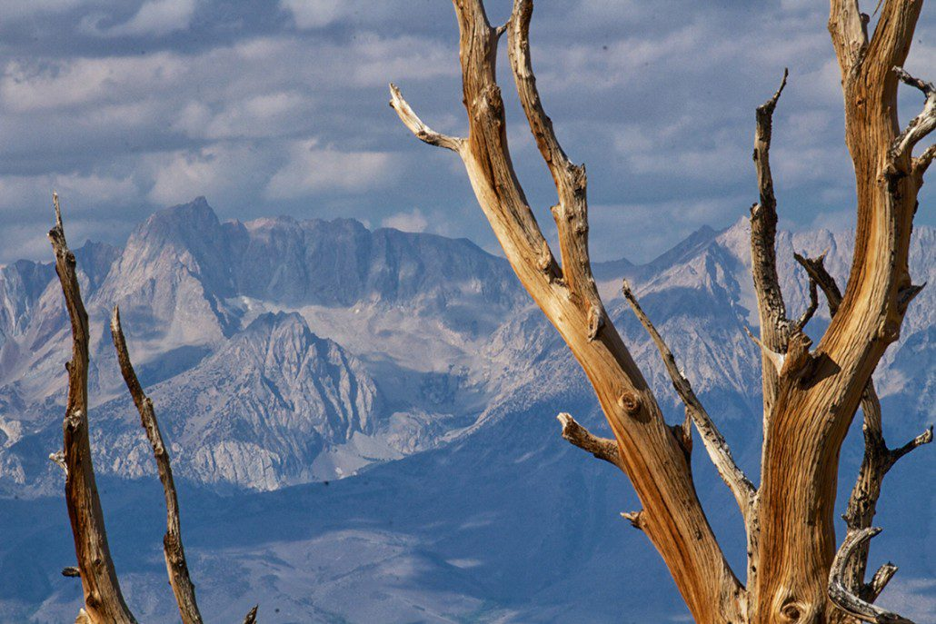 A parched Sierra Nevada during the 2014 drought as seen from the Bristlecone Forest, Inyo National Forest.